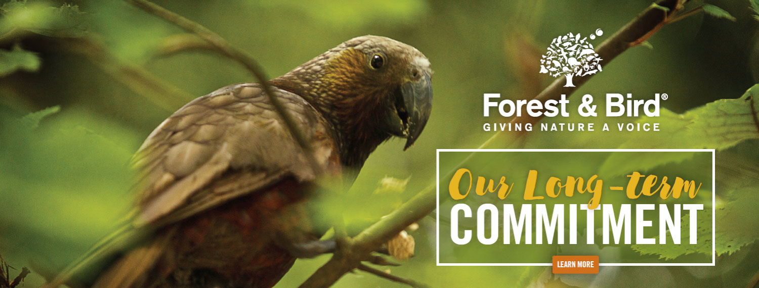 Our commitment to Forest & Bird